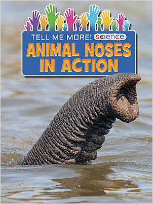 Cover: Animal Noses in Action