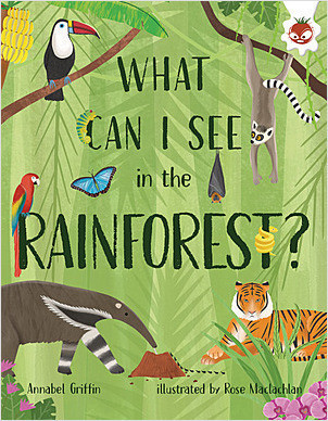Cover: What Can I See in the Rainforest?