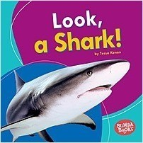 Cover: Look, a Shark!