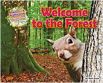 Cover: Welcome to the Forest