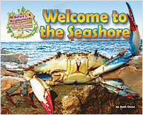 Cover: Welcome to the Seashore