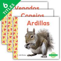 Cover: Animales comunes (Everyday Animals )