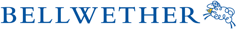 Bellwether Media, Inc.