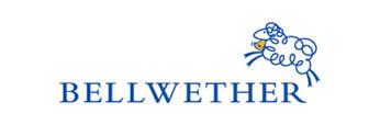 Bellwether Media